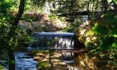 Visitando el Jardín Botánico